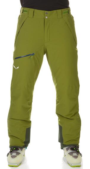 Salewa Antelao Beltovo PTX/PF Pant Men cedar green